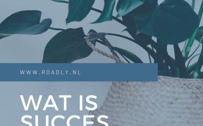 Wat is succes voor jou?
